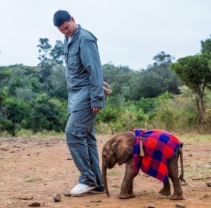 Yao Ming has broadened his focus to reducing consumer demand for ivory and rhino horn. Photo credit: WildAid.