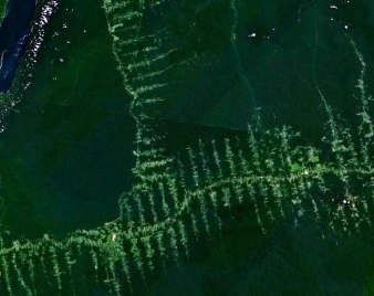 Roads often act as a catalyst for deforestation by allowing development in the remote interior regions of forests, resulting in a signature fishbone pattern of deforestation. Photo credit: NASA.