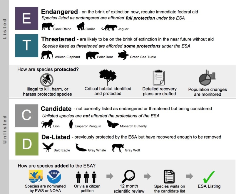 an analysis of the endangered species act of 1973 Sec 17 - marine mammal protection act of 1972 sec 18 - annual cost analysis endangered species act of 1973 endangered under the endangered species.