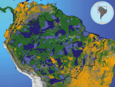 A map of protected areas (light purple) and indigenous lands (dark purple) in the Amazon. Deforested areas are in yellow. By strategically protecting lands along the advancing arc of deforestation, the government was able to maximize the effectiveness of protected areas. Photo credit: Woods Hole Research Center.