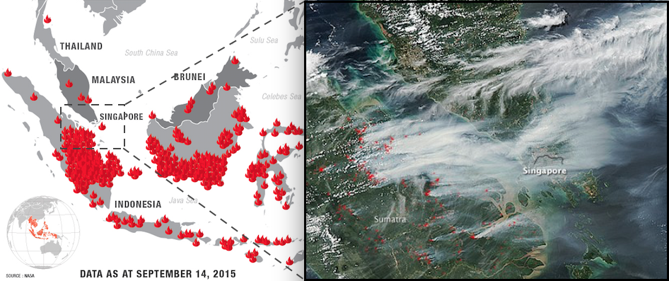 Why Is Indonesia On Fire And What Can You Do To Help Conserve - Wildfires map in southeastern us