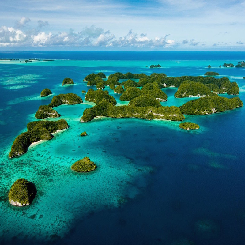 These 4 countries took huge steps to protect the ocean in 2015