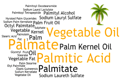 Palm oil word cloud