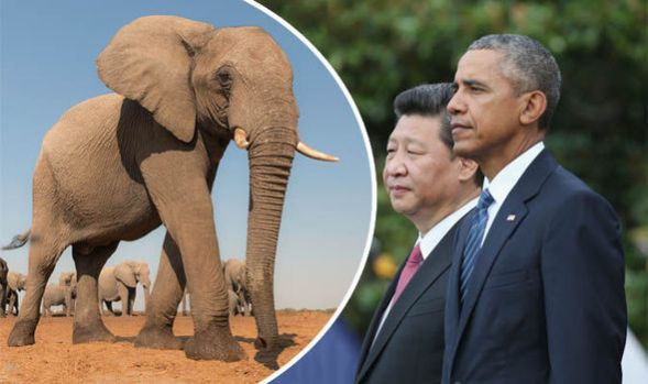 barack-obama-and-Xi-Jinping-608198