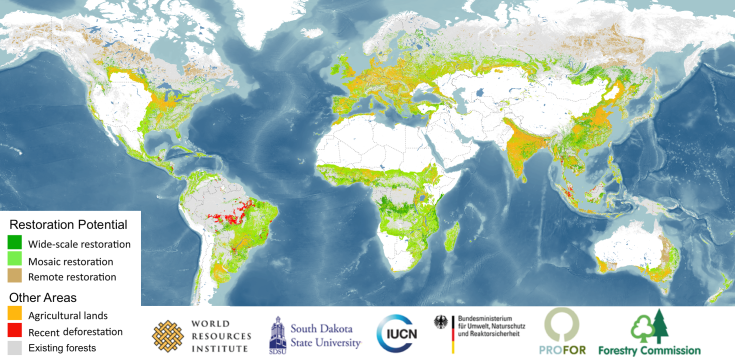 forest_restoration_map_2011-09_hires