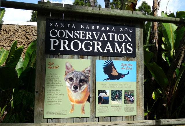 zoo-conservation-programs